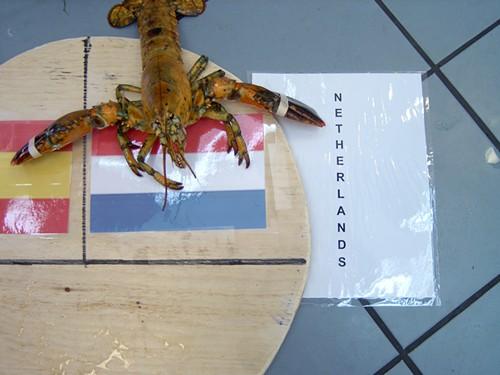 Ally_Bino_the_Psychic_Lobster_-_03.jpg