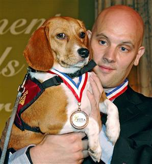 beagle pleased with hims medals!